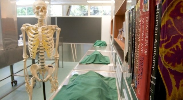 Wet Lab Anatomy For Massage Therapists And Personal Trainers Aug